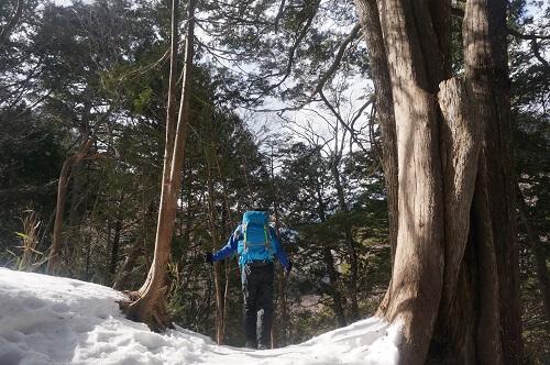 手白澤温泉までの山道